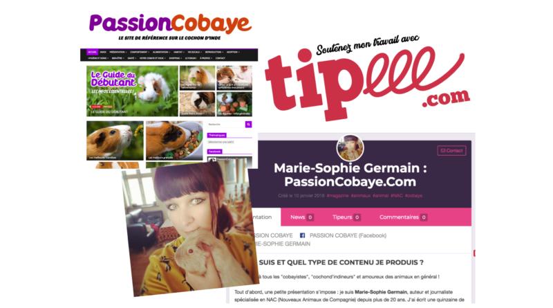 Passion Cobaye a besoin de votre aide sur Tipee !